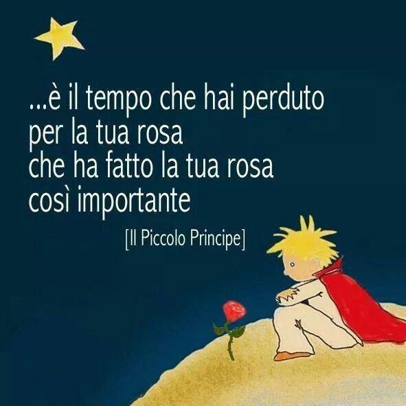 """Frasi - """"... è il tempo che hai perduto per la tua rosa che ha fatto la tua rosa così importante."""" - Il Piccolo Principe"""