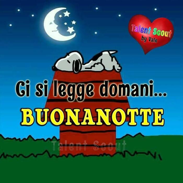 """""""Ci si legge domani... BUONANOTTE"""" - Snoopy"""