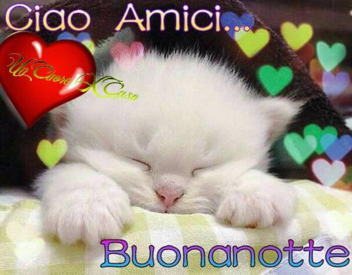 """""""Ciao Amici... Buonanotte"""""""