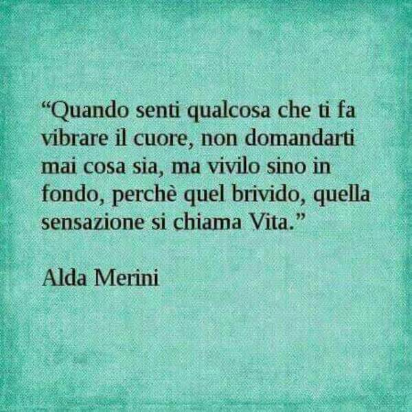 """""""Quando senti qualcosa che ti fa vibrare il cuore, non domandarti mai cosa sia, ma vivilo sino in fondo, perchè quel brivido, quella sensazione si chiama VITA"""" - Alda Merini"""