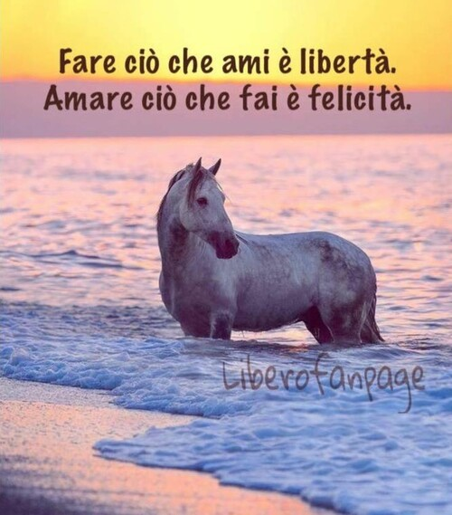 """""""Fare ciò che ami è libertà. Amare ciò che fai è felicità."""""""