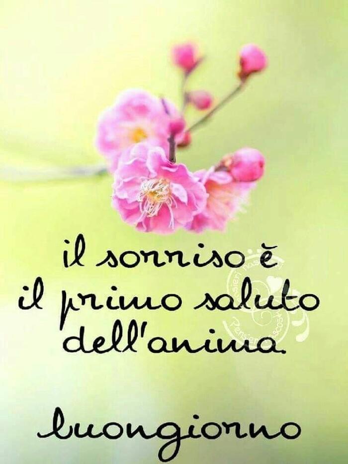 """Buongiorno primavera - """"Il saluto è il primo sorriso dell'anima."""""""
