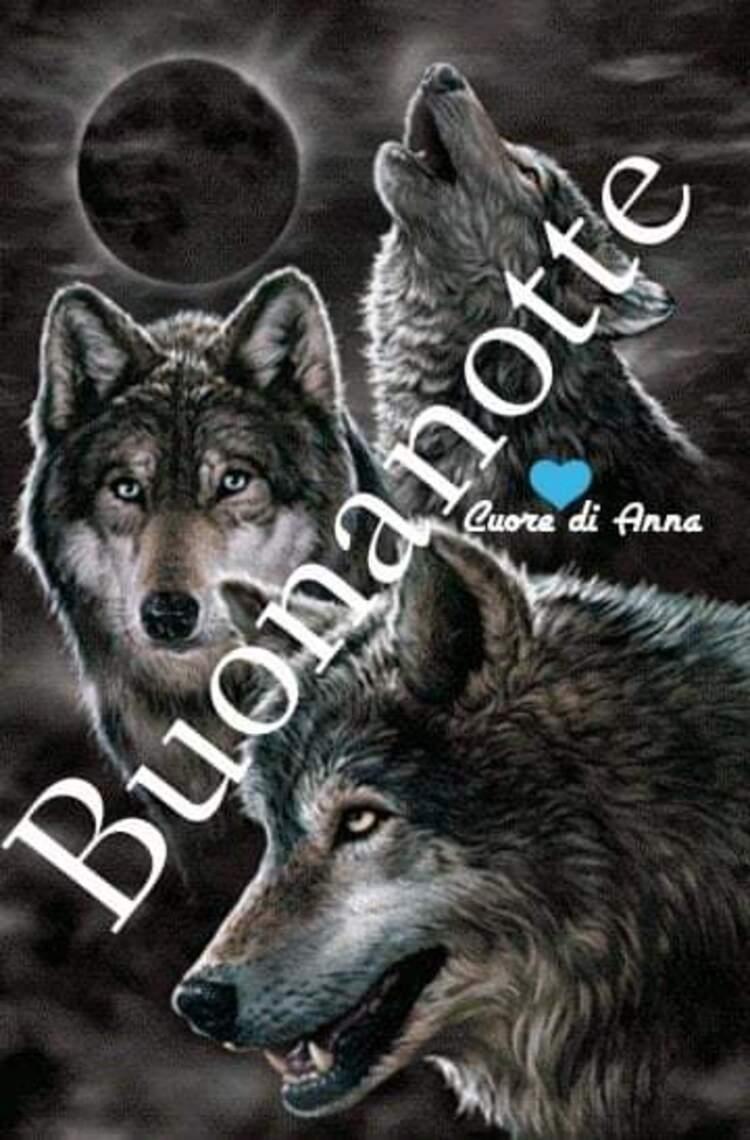 """Cuore di Anna - """"Buona Notte con i lupi"""""""