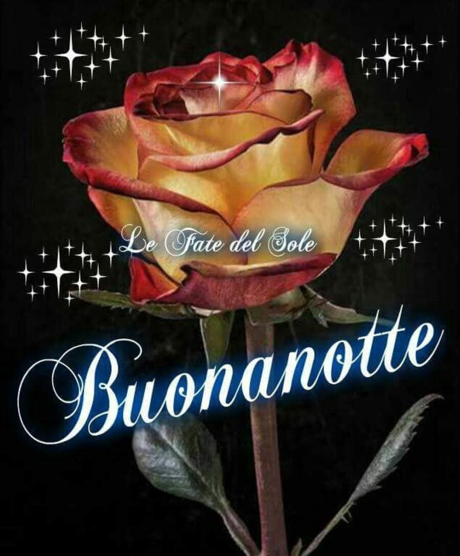 """Le Fate del Sole - """"Buonanotte con una rosa bellissima"""""""