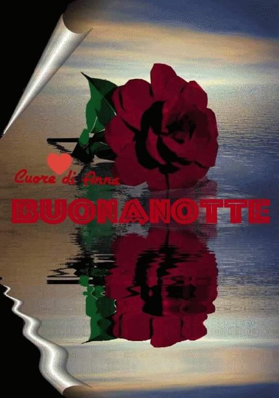 Buona Notte con le rose - Cuore di Anna