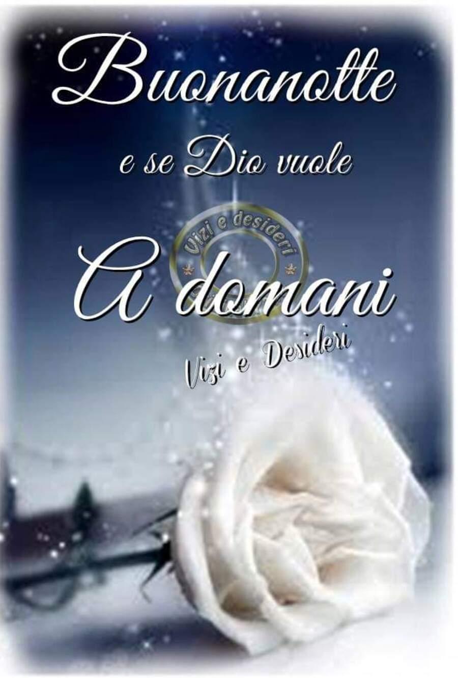 """""""Buonanotte e se Dio vuole, a Domani"""" - Buona Notte con una rosa bianca"""