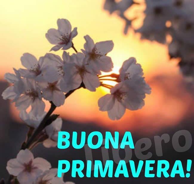 """""""Buona Primavera!"""""""