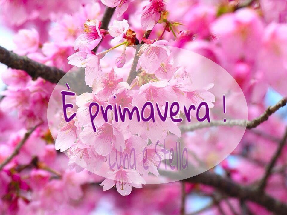 """Belle immagini - """"E' Primavera!"""""""