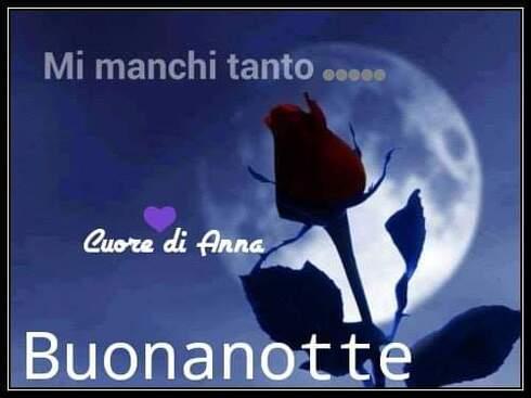 """""""Mi Manchi Tanto... Buonanotte Amore"""""""