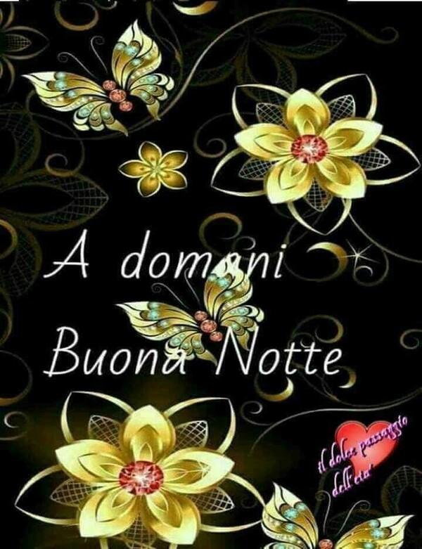 """""""A Domani, Buona Notte"""""""