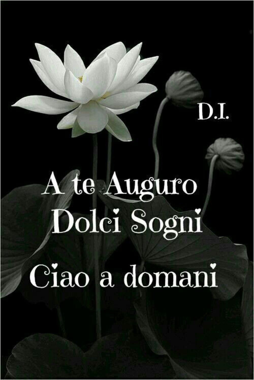 """""""A Te auguro Dolci Sogni. Ciao a Domani"""""""