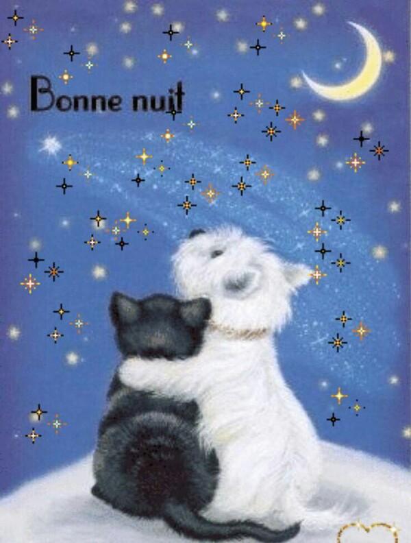 """""""Bonne Nuit"""" - Buonanotte in francese con l'abbraccio"""