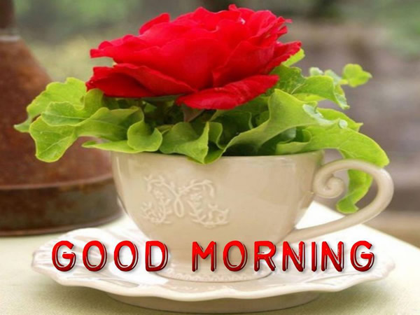 """Good Morning"" - buonanotte in lingua inglese"