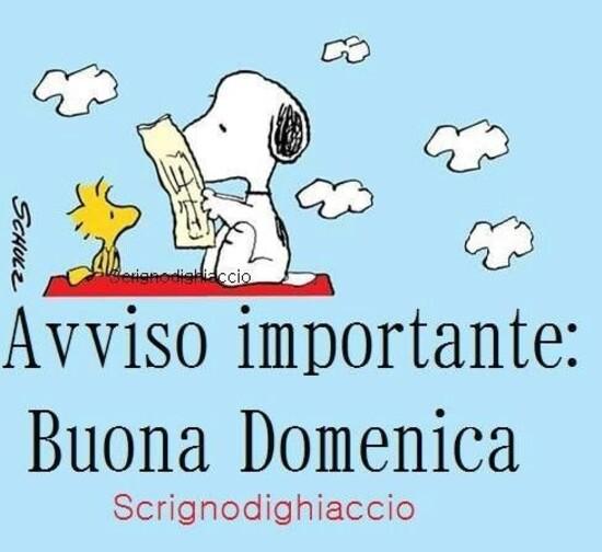 """Avvisto Importante: Buona Domenica"" - Snoopy"