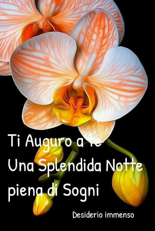 """Buonanotte con i fiori - """"Ti auguro una Splendida Notte piena di Sogni"""""""