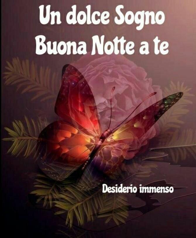 """""""Un Dolce Sogno, Buona Notte a Te"""""""