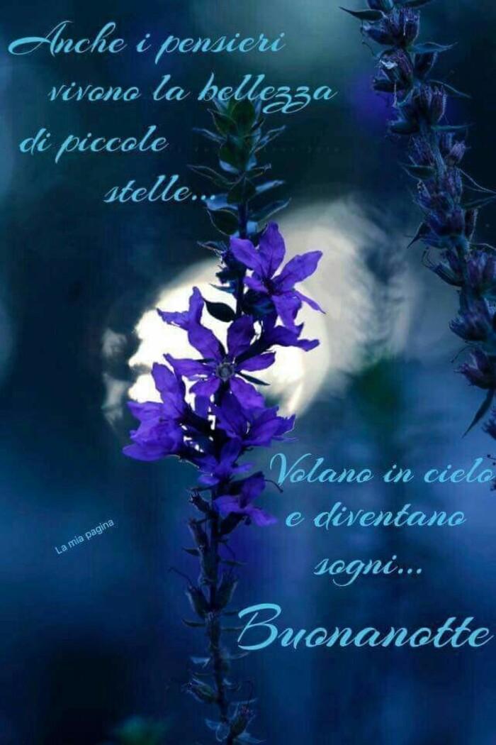 """Buonanotte primaverile - """"Anche i pensieri vivono la bellezza di piccole stelle... volano in cielo e diventano sogni..."""""""