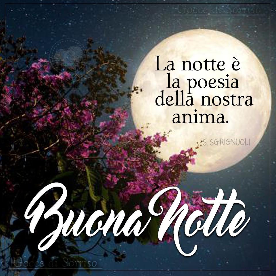 """""""La notte è la poesia della nostra anima. Buona Notte"""""""