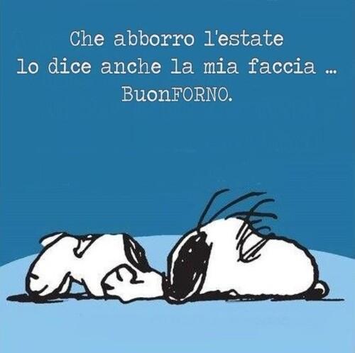 """""""Che aborro l'estate lo dice anche la mia faccia... BuonFORNO"""" - Snoopy"""