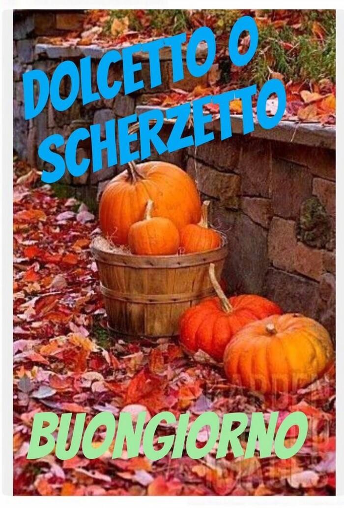 """""""Dolcetto o Scherzetto?"""" - Buongiorno Halloween"""