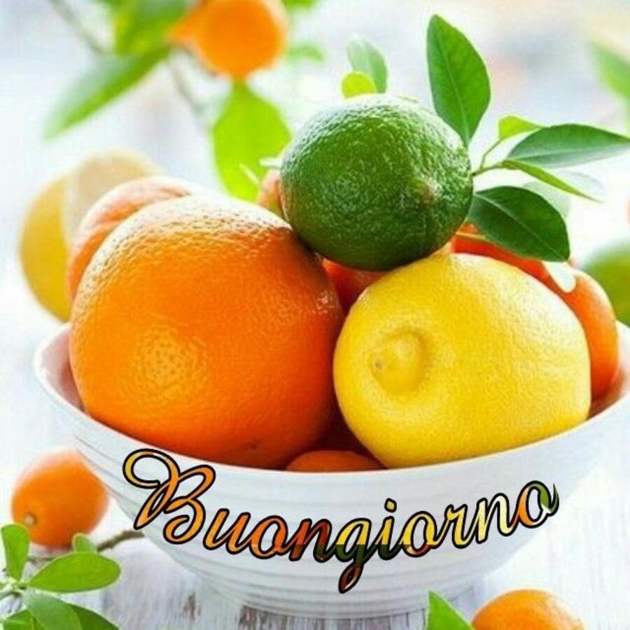 Buona Giornata con arance e limoni