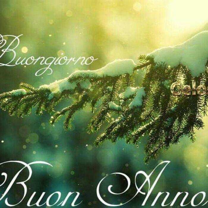 """""""Buongiorno, Buon Anno"""""""