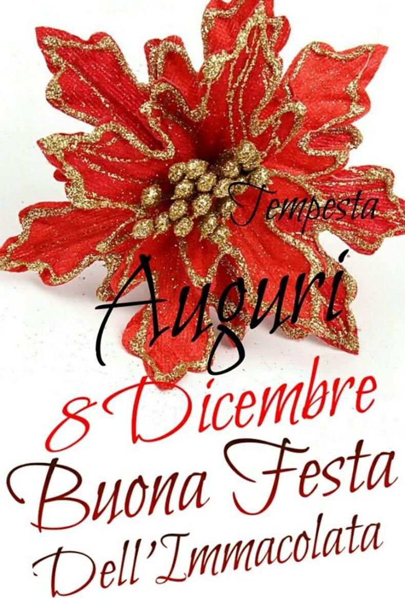 """""""Auguri 8 Dicembre, Buona Festa dell'Immacolata"""""""