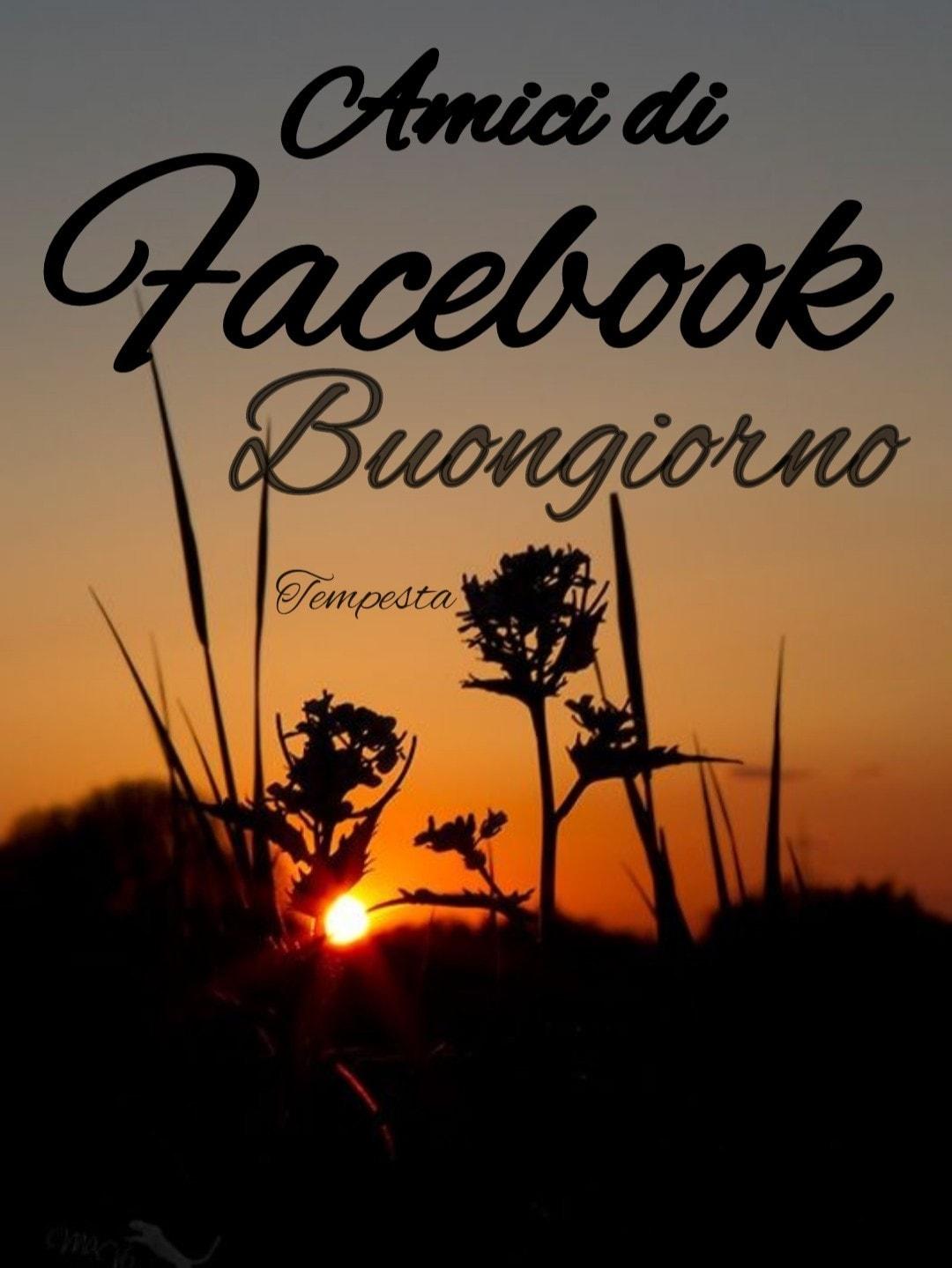 Amici di Facebook Buongiorno (Tempesta)